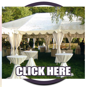 Click Here to Enter Party's Plus Rentals & Sales in Mount Pleasant Michigan